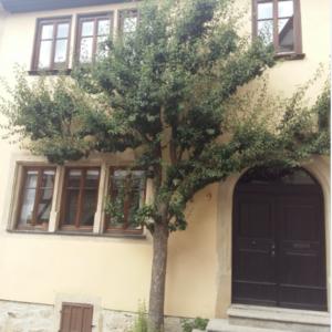 Nordlingen, pero su casa