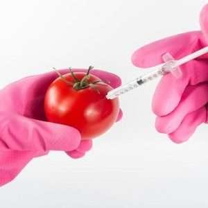 pomodoro con siringa