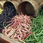 legumi di vari tipi