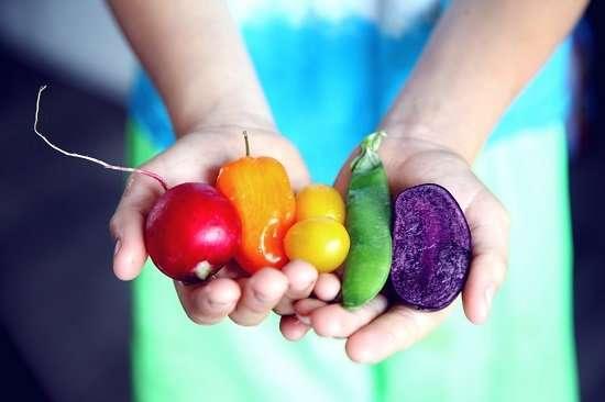 mani con frutta e verdura di stagione
